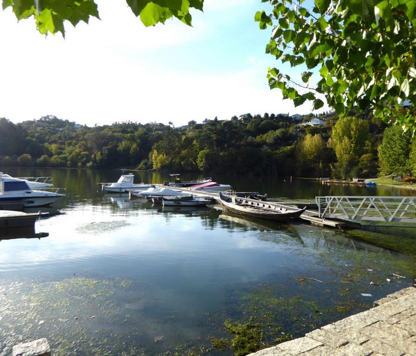 Quinta de Águia - Alojamento Local - Guest House - Atividades